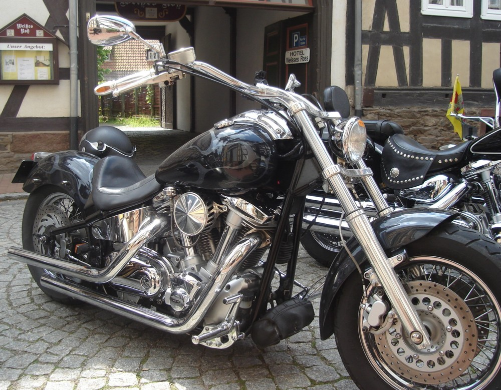Picture of Chromes XV1600 Wild Star